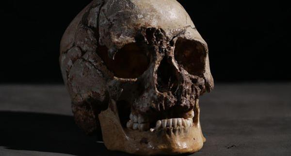 3d-printed-reconstruction-10000-year-old-man-face-reveals-much-about-ancient-brits-1.jpg